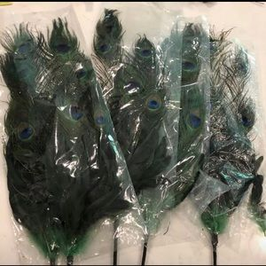 Other - Peacock feathers set of 5 still in plastic